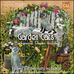 Cat pack garden cats